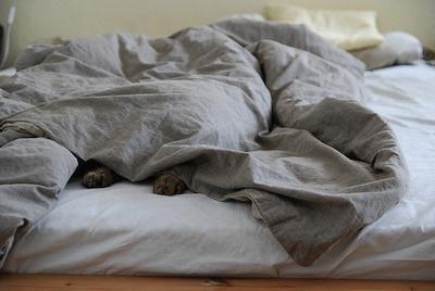 布団・ベッドの中で密着ねっとりセックスプレイの興奮がヤバい【イメージ動画あり】